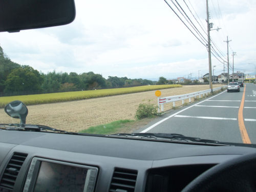 田・田んぼ・稲刈り